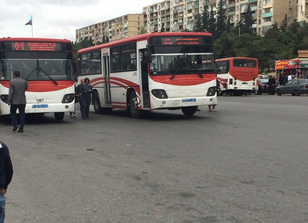 trend_bus_probka_151015__(14)