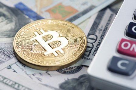 Bitcoin-calc-dollar